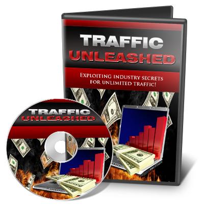 trafficunleashed.jpg